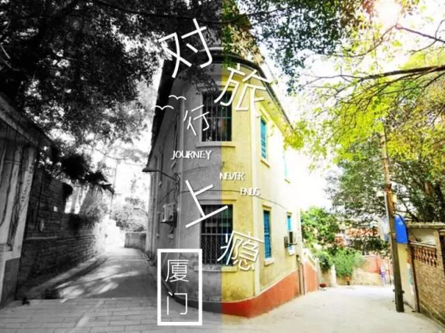 在杭州外桐坞,有许多我和青苔的故事